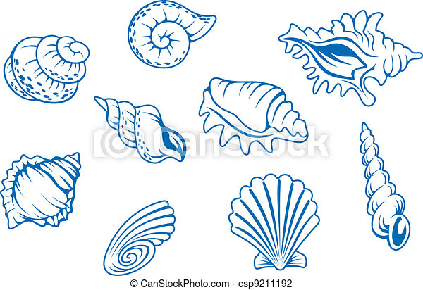 Set of ocean seashells - csp9211192