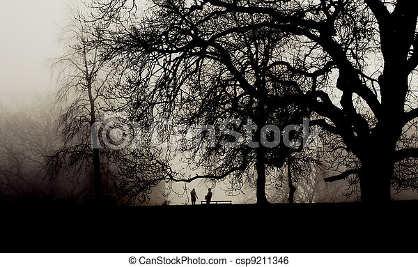 Two people meet in a misty park - csp9211346