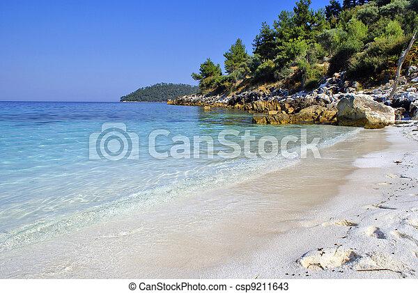Beautiful beach in Zante island, Greece - csp9211643