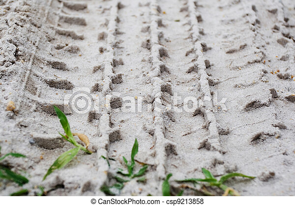 Tire Tracks in the Sand - csp9213858