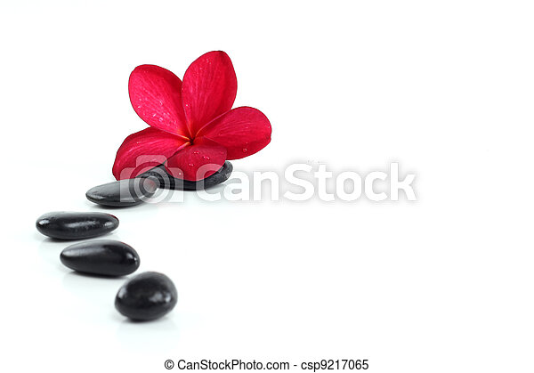 zen stones with red frangipani flower and text space on white - csp9217065
