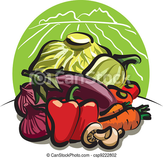 vegetable harvest  - csp9222802