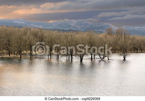 Wetlands at Columbia River Gorge - csp9226069