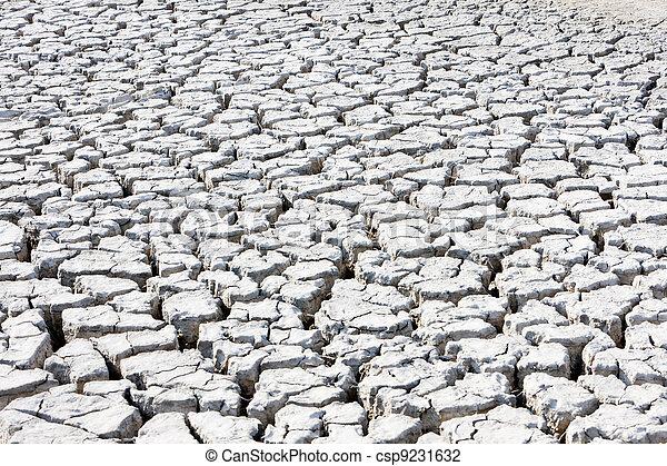 dry land, Parc Regional de Camargue, Provence, France - csp9231632