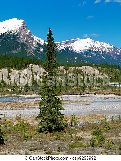 View on Canadian Rockies Mountains - csp9233992