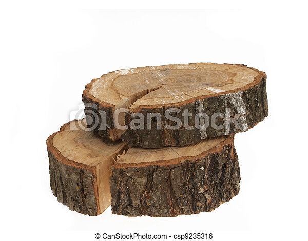 Cross section of tree trunk showing growth rings on white background - csp9235316