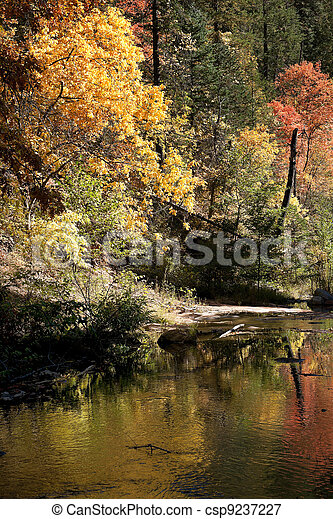 Forested border of Oak Creek canyon shows its fall colors - csp9237227