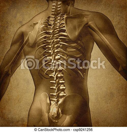 Human Back Grunge Texture - csp9241256