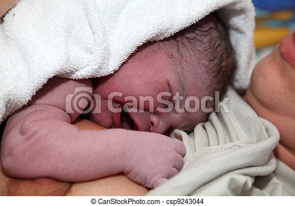Newborn baby minutes after birth - csp9243044
