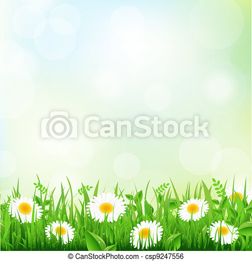 Grass And Daisy - csp9247556