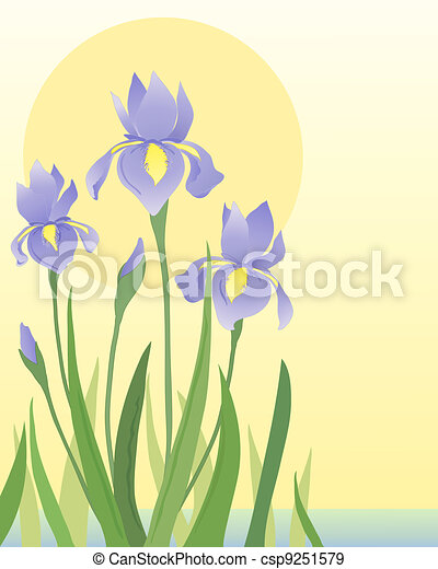 Irises stock illustration royalty free illustrations stock clip