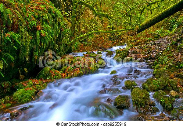 Spectacular Falls - csp9255919