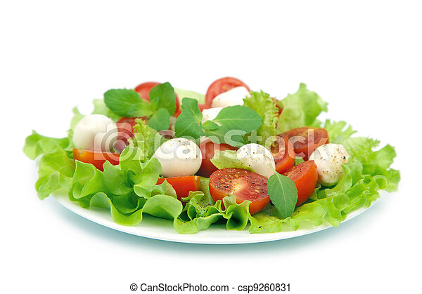 salad with tomatoes and mozzarella isolated - csp9260831