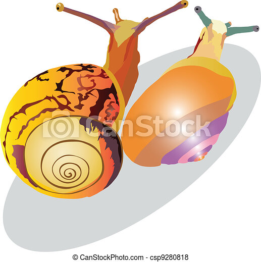 snail crawling up - csp9280818