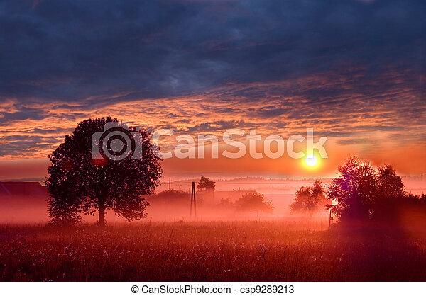 Rural landscape. - csp9289213