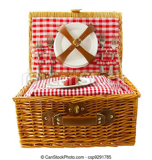Picnic basket - csp9291785