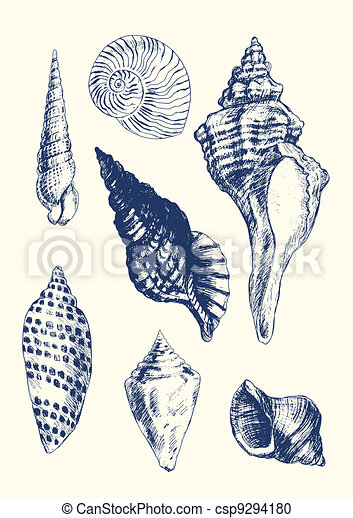 7 various seashells - csp9294180