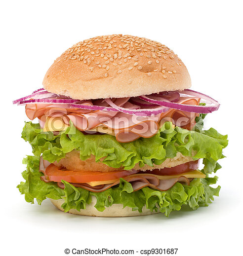 Junk food hamburger - csp9301687
