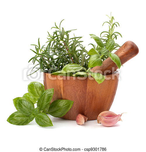 fresh flavoring herbs and spices in wooden mortar - csp9301786