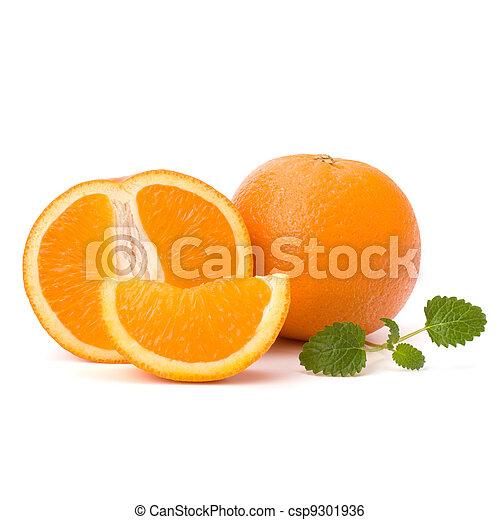 Orange and citron mint leaf   - csp9301936