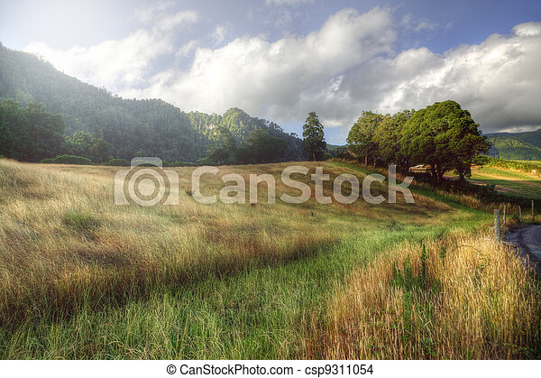 Peaceful rural landscape in Azores, Portugal - csp9311054