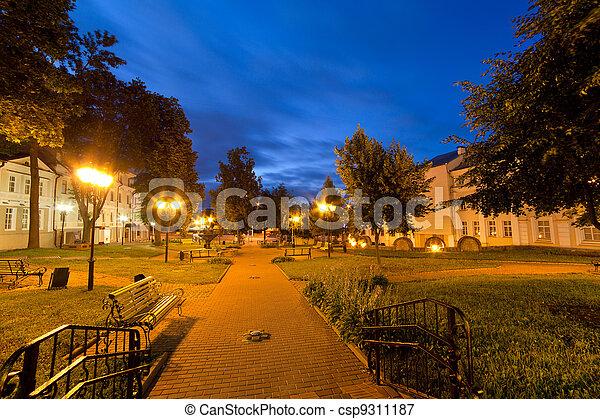 Kind of a night city, Vitebsk, Belarus - csp9311187
