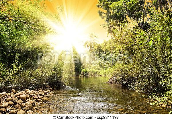 River in jungle, Thailand - csp9311197