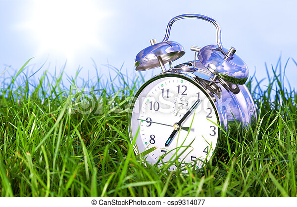 Morning alarm clock on grass - csp9314077