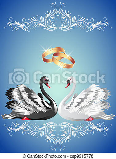 Wedding rings and two swans - csp9315778