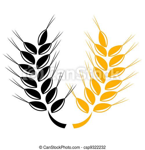 Wheat ears - csp9322232