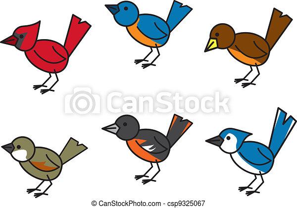 Popular Birds - csp9325067