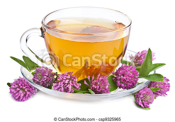 herbal tea and clover flowers isolated - csp9325965