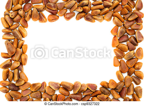 frame with Nuts of Siberian Cedar Pine - csp9327322