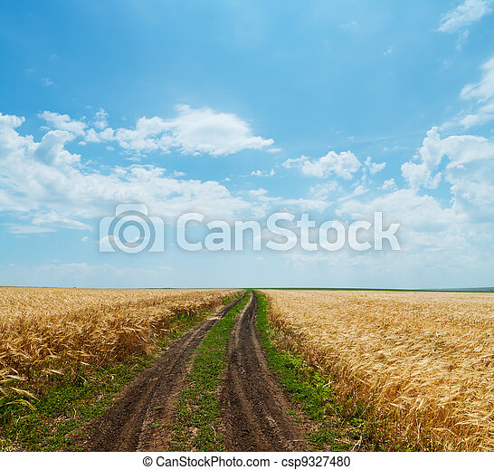 rural road in golden agricultural field under cloudy sky - csp9327480