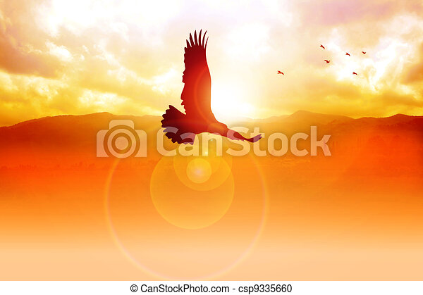 Freedom On The Sky - csp9335660