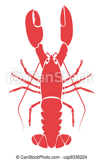 lobster illustration  - csp9336224