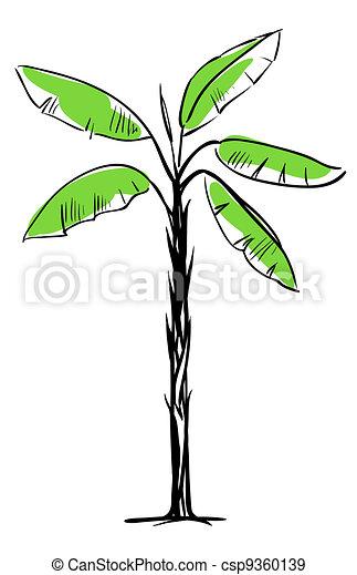 Palm Tree - csp9360139