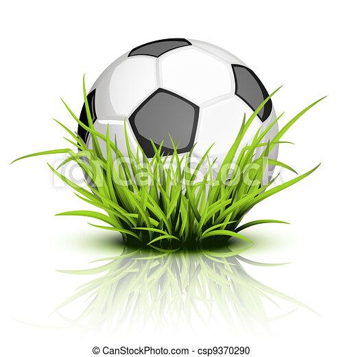 Soccer ball on reflecting grass - csp9370290