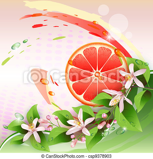 Background with grapefruit slice - csp9378903