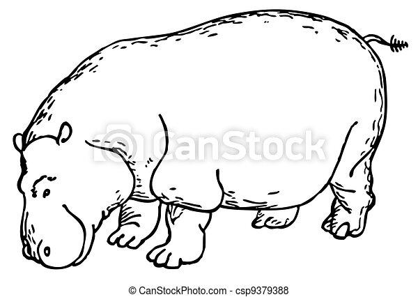 Hippopotamus - csp9379388