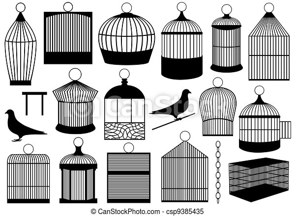 Bird Cages - csp9385435