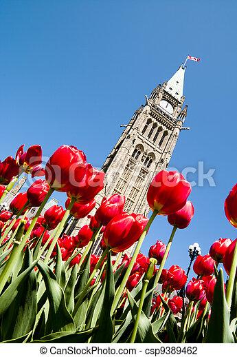 Spring Politics - csp9389462