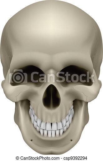 Human Skull - csp9392294