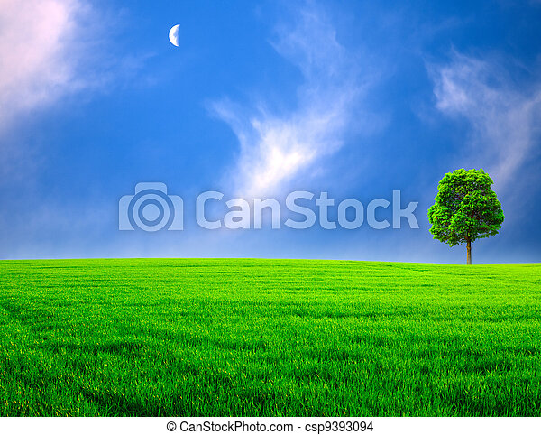 Abstract rural landscape. Green meadow under the blue skies - csp9393094