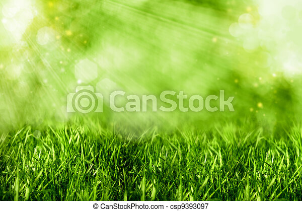 Abstract summer backgrounds with green grass and bokeh - csp9393097
