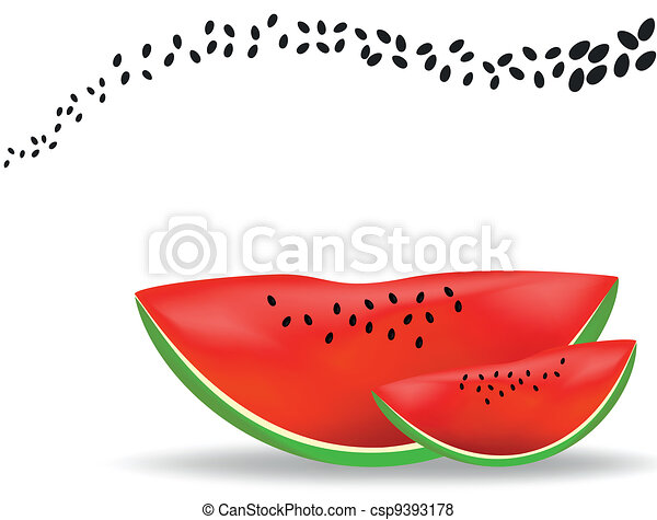 Watermelon - csp9393178