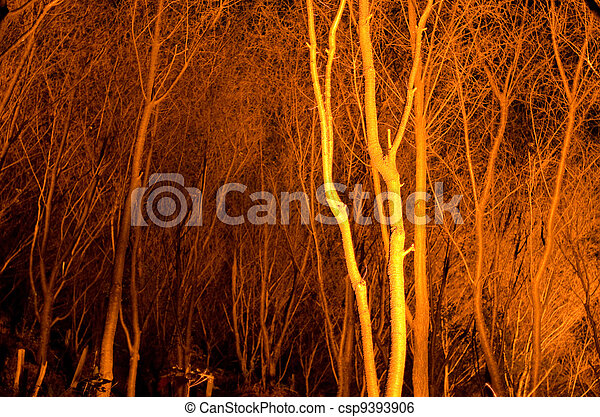 Tree stems at night - csp9393906