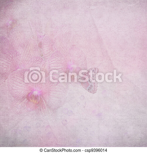 dreamy butterfly on orchid - csp9396014