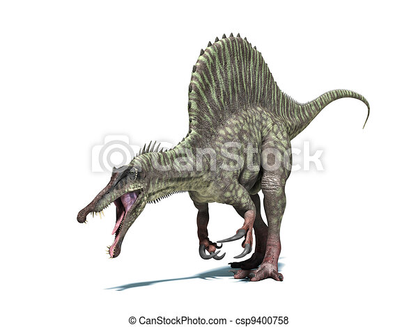 Spinosaurus dinosaur. Very detailed and scientifically correct. Isolated on white background with drop shadow and  included. - csp9400758