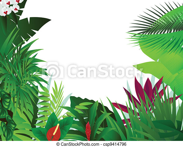 beautiful forest background - csp9414796
